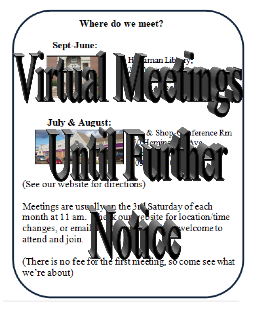 Virtual Meetings until Further Notice